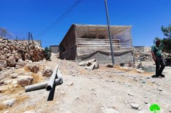 The Israeli Occupation Notifies a Barn in Ghuwein Hamlet – South As-Samou' / Hebron Governorate