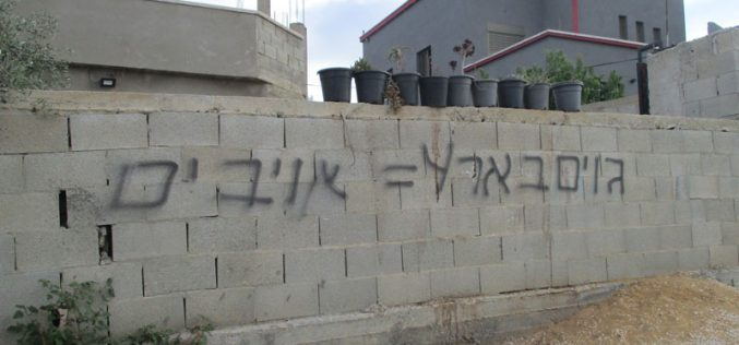 "Illegal Settlers of ""Barkan"" Assault Palestinian Properties in Sarta / Salfit Governorate"