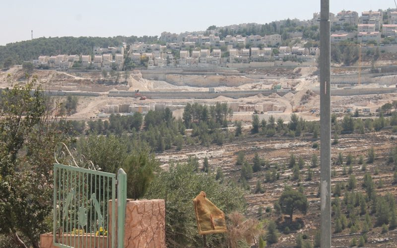 Monitoring Report on the Israeli Settlement Activities in the occupied State of Palestine – April 2019