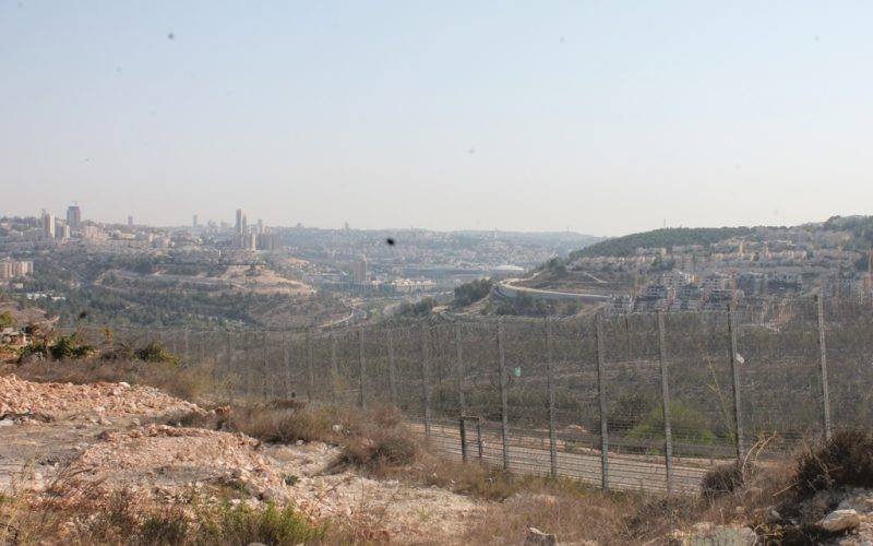 Monitoring Report on the Israeli Settlement Activities in the occupied State of Palestine – May 2019