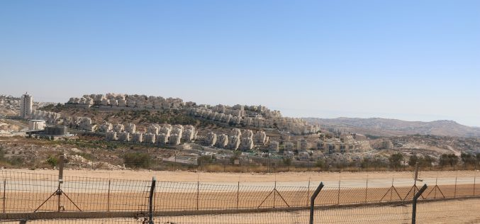 Israeli settlement Activities in the occupied State of Palestine during the 1st Quarter of 2019, (January – March) / 2019