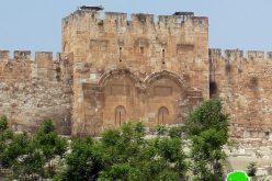 سلطات الاحتلال تقوم بإغلاق باب الرحمة من داخل المسجد الأقصى بالسلاسل الحديدية / القدس المحتلة