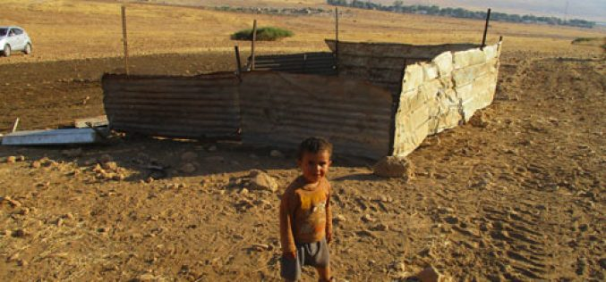 IOF Demolish and Confiscate Residential and Agricultural Tents in Khirbet Al-Hadidiya/ Tubas