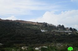"Establishing a New Colonial Block in ""Ma'ale Israel"" on Salfit Lands"