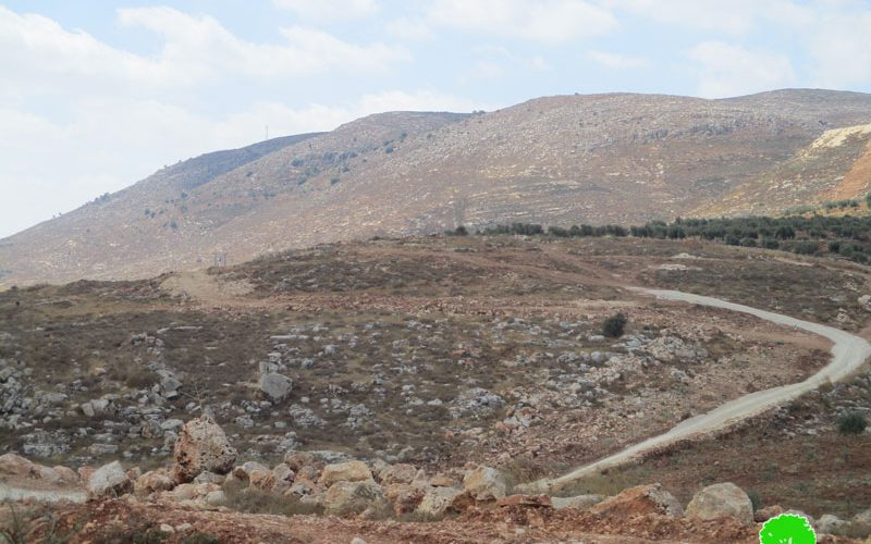 The Israeli occupation halts work on an agricultural road in Sinjil /Ramallah governorate