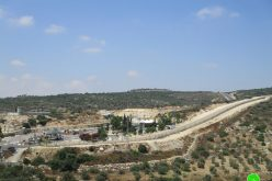 Eviction order on 112 dunums of Ya'bad village / Jenin Governorate