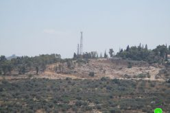 "The Occupation authorities turn forests into a construction area for the favor of  ""Ma'ale Shamron"""