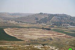 """مستعمرو """"شيلو"""" يجرفون الأراضي الزراعية المجاورة بهدف الاستيلاء عليها في بلدة سنجل / محافظة رام الله"""