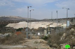 "Ravaging Palestinian agricultural lands for the favor of ""Karnei Shamron"" settlement / Qalqilya governorate"