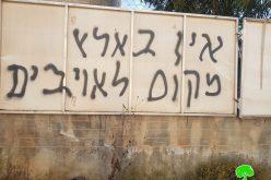 """مستعمرون من عصابة """" تدفيع الثمن"""" يعتدون على الممتلكات الفلسطينية في قرية قيرة / محافظة سلفيت"""
