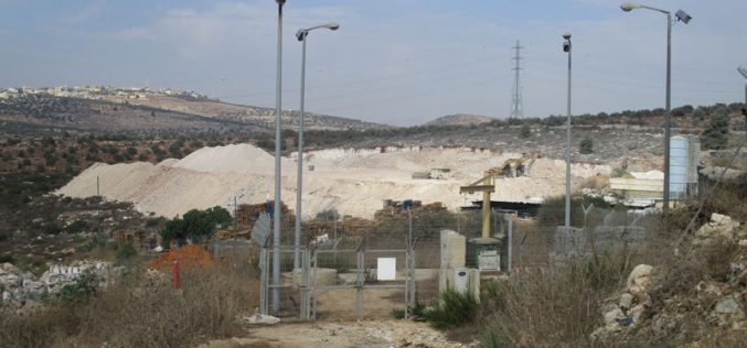 """Ravaging Palestinian agricultural lands for the favor of """"Karnei Shamron"""" settlement / Qalqilya governorate"""