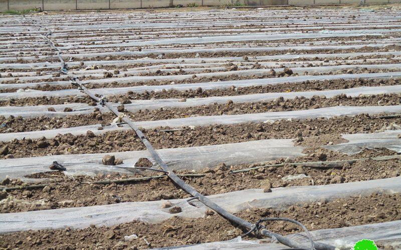 تدمير ومصادرة خطوط مائية في قرية عين البيضا / محافظة طوباس