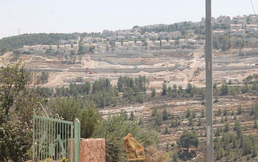 Monitoring Report on the Israeli Settlement Activities in the occupied State of Palestine – November 2019