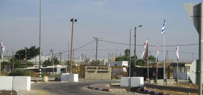 Expansion works in Sa'ora military camp in the Jordan Valley / Tubas