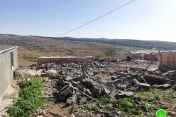 Demolishing an agricultural facility in Ghuwain south As-Samou'/ Hebron governorate