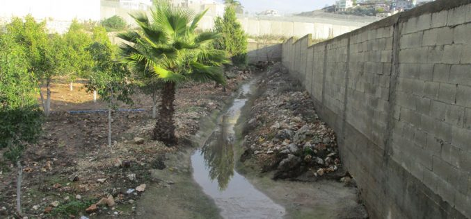 "Settlers of ""Sha'arei Tikva"" pump their waste water towards 'Azzun high school in Qalqilya"