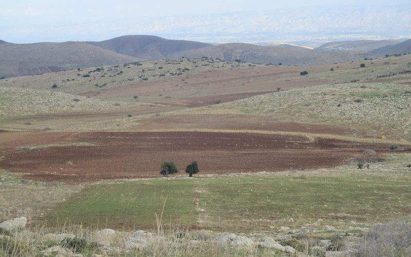 The Israeli occupation serves an eviction order on a plot – Khirbet Al-Himeh / Tubas governorate