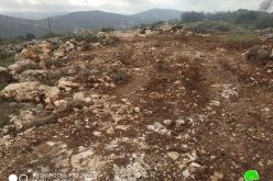 Ravaging agricultural lands in Iskaka village / Nablus governorate