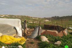 مستعمرون يسرقون 25 رأساً من الخراف في خربة جبعيت / محافظة رام الله