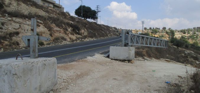 Setting up a metal gate and halting work on an agricultural road in Umm Safa/ Ramallah governorate