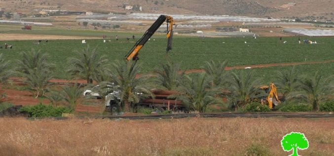 Demolition of residential and agricultural facilities in Sahel Al-Buqai'a / Tubas governorate