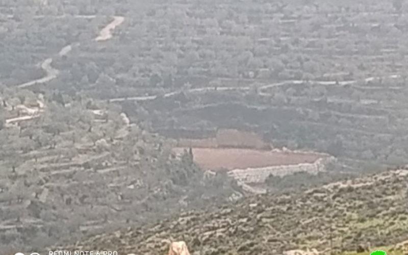 بذريعة أنها محمية طبيعية .. الاحتلال يخطر قطعة أرض في بلدة كفر ثلث / محافظة قلقيلية