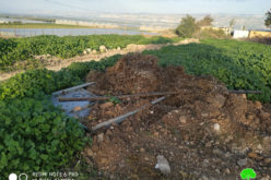 Destroying hundreds of water lines in Bardala village / Tubas governorate