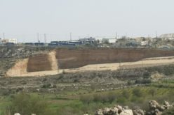 Monitoring Report on the Israeli Settlement Activities in the occupied State of Palestine – July 2020