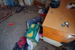 مستعمرون يسرقون خياماً وأدوات زراعية في خربة سمرا بالأغوار الشمالية / محافظة طوباس