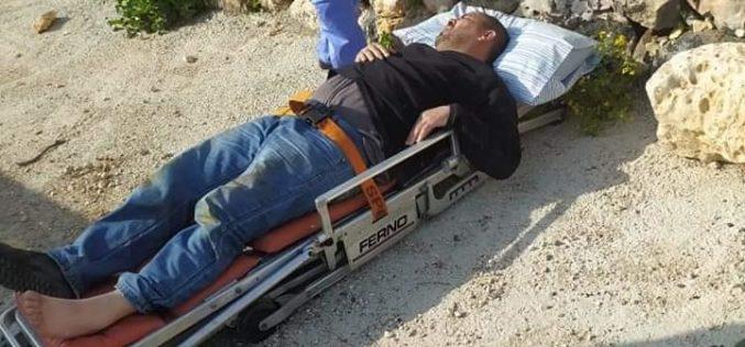 الاعتداء على مزارعين اثناء عملهم في أرضهم الزراعية في قرية جيبيا شمال رام الله