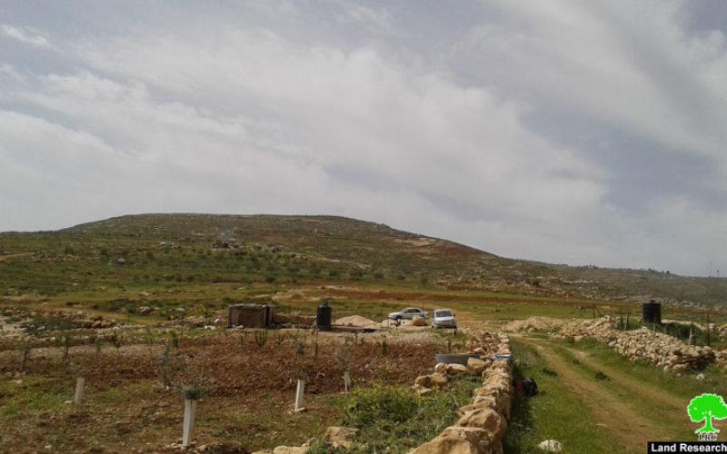 مستعمرون يعتدون على المزارعين شرق بلدة الشيوخ بمحافظة الخليل