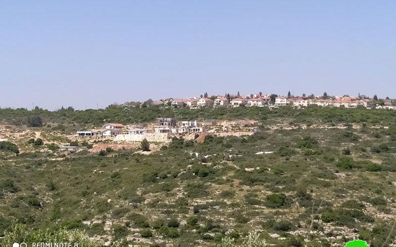 """الشروع بإقامة حي استعماري جديد في محيط مستعمرة """" حفات يائير"""" على أراضي سلفيت"""