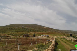 Settlers attack farmers and their lands east of Al-Shuyoukh town / Hebron governorate
