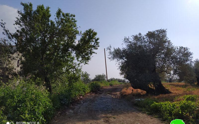 إيقاف العمل في تأهيل طريق زراعي في بلدة كفر الديك بمحافظة سلفيت
