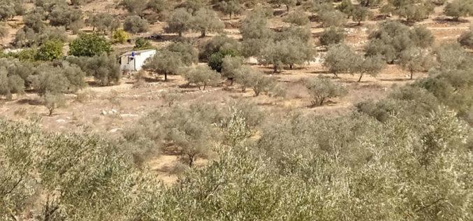 إخطار بوقف العمل في غرفة زراعية ببلدة جيوس بمحافظة قلقيلية