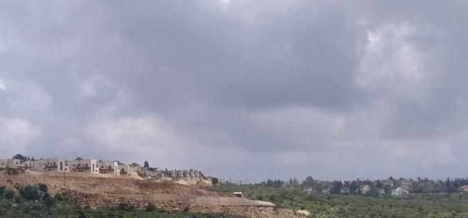 Leveling lands in Sarta for the Favor of Barkan settlement / Salfit