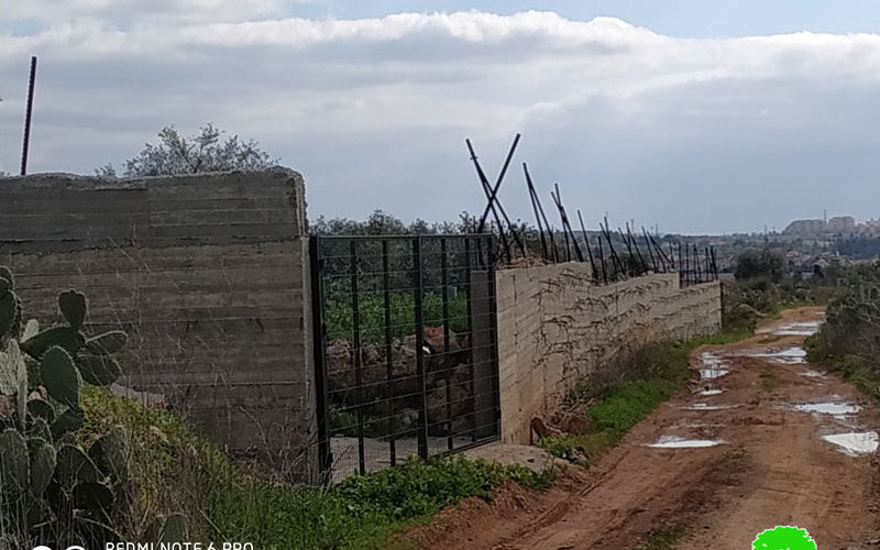 Final notice for retaining walls in Ni'lin town / Ramallah governorate