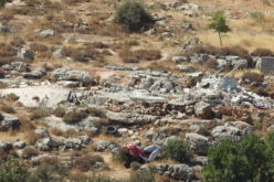 "The Israeli Occupation demolishes an agricultural room in ""Wad Al-A'awar"" south Hebron"