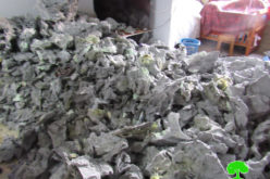 بذريعة الأمن … الاحتلال يغلق غرفة الأسير نظمي أبو بكر في بلدة يعبد بمحافظة جنين