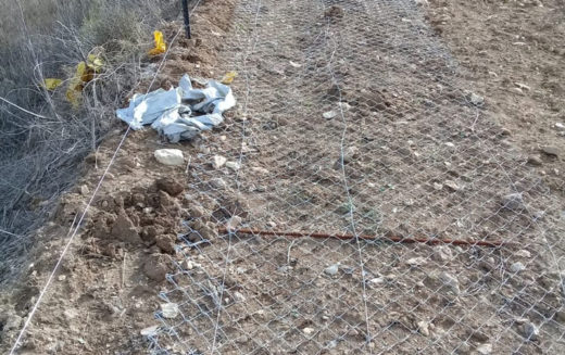 "The settlers of ""Hafat Gilad"" cut and steal a fence around a plot of land in the village of Farata, Qalqilya Governorate"