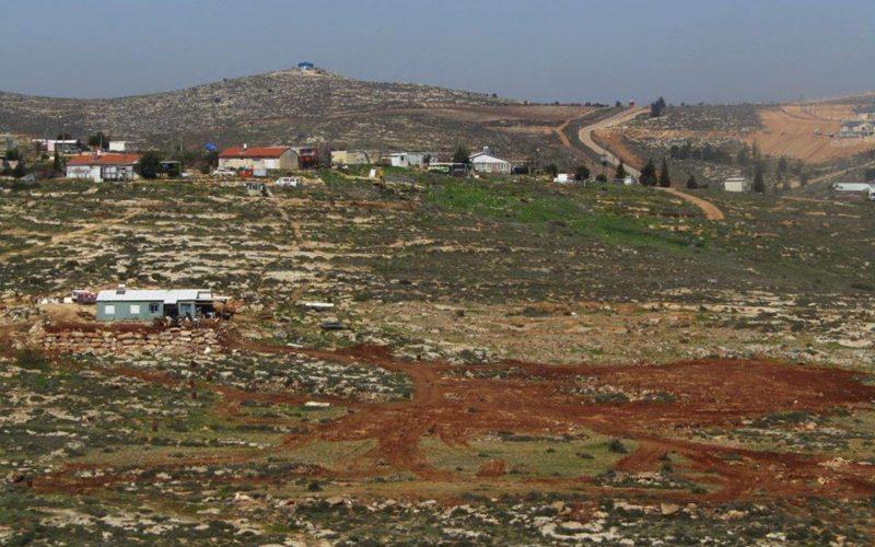 Settlers ravage lands and uproot trees in Al-Mughayyir / Ramallah