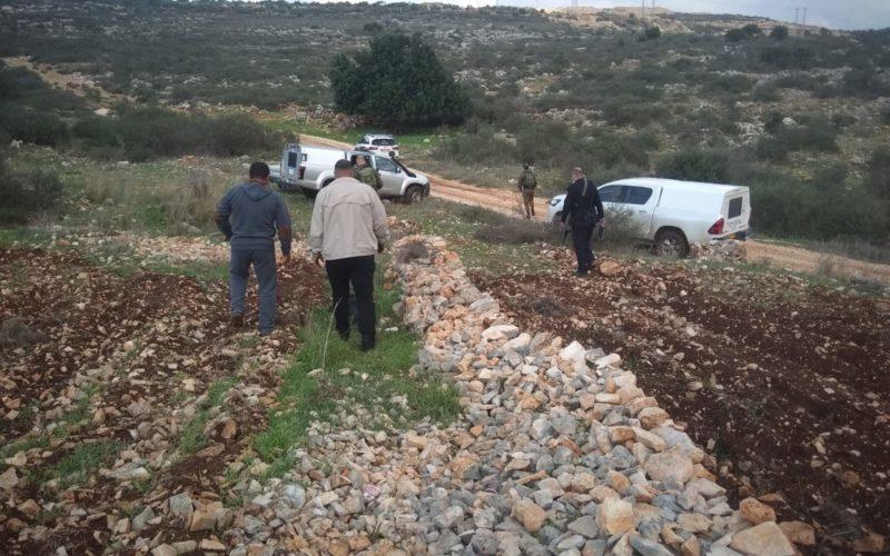"""مستعمرو """"بروخين"""" يتلفون 35 غرسة زيتون من أراضي بلدة بروخين / محافظة سلفيت"""