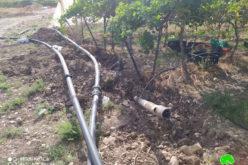 تدمير ومصادرة شبكات ري تخدم 45 دونماً في قرية الجفتلك / محافظة أريحا
