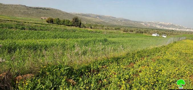 """مستعمرة """" عادي عاد"""" يحطمون تحطيم سياج ويسرقون زوايا حديدية من أراضي بلدة ترمسعيا / محافظة رام الله"""