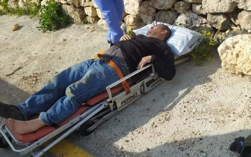 Fanatic Colonists Attack Farmers in Jibya village / Ramallah governorate