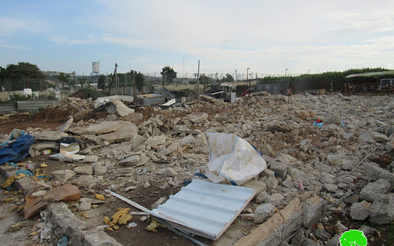 Two commercial stores demolished in Qalqliya city