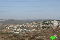 Expanding Revava Colony on Salfit governorate