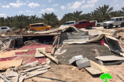 Demolishing Residential and Agricultural facilities in Deir Abu Hajleh area – Jericho governorate