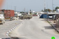 The Occupation Destroys Market Stalls nearby Aj-Jalama military checkpoint / Jenin Governorate