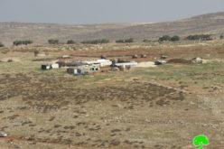 مستعمرون يسرقون 20 رأساً من الأغنام في بلدة الطيبة / محافظة رام الله